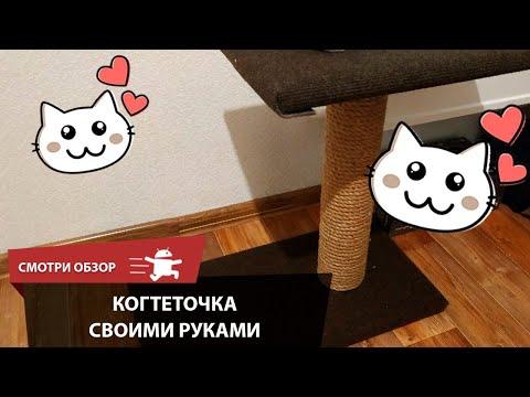 Вопрос: Из какого материала когтеточка самая хорошая для кошек?