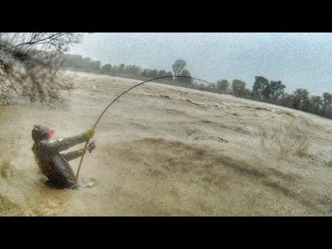 Crazy Man Fight Big Catfish In A Swollen River Under The Storm - HD By Catfish World