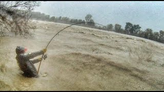 Crazy Man Fight Big Catfish in a Swollen River Under the Storm…