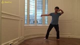 Zhan Zhuang   Jan Wu Postures et mouvements