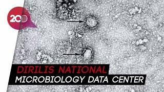 Peneliti china menunjukkan foto bentuk penampakan virus corona. tersebut terpampang dalam halaman resmi national microbiology data center (nmdc). ayo to...