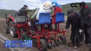《我爱发明》 20200623 移栽能手|CCTV农业