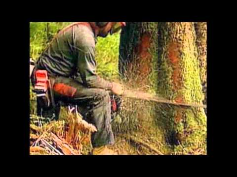 Coldcut - Timber