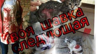 ЖИВОДЕРЫ и ЗООЗАЩИТНИКИ убивают | Убийство Животных | Жестокость в Цирках и ЗООПАРКАХ