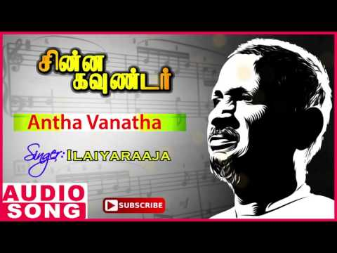 Antha Vanatha Song | Chinna Gounder Tamil Movie | Vijayakanth | Sukanya | Ilayaraja | Music Master