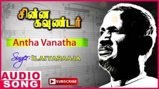 Antha Vanatha Song | Chinna Gounder Tamil Movie | Vijayakanth | Sukanya | Ilayaraja | Music Master