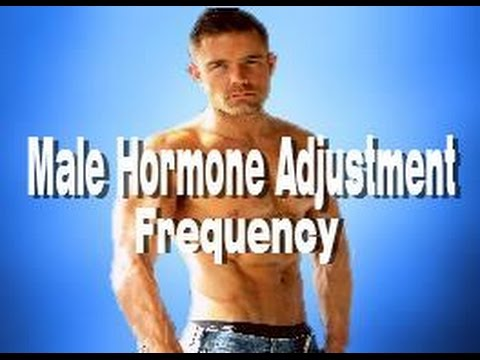 Male Hormone Adjustment Frequency - Masculinity Manly Features