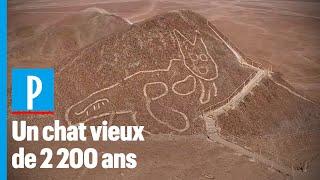 Pérou : un chat géant découvert sur les lignes de Nazca
