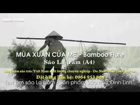 MÙA XUÂN CỦA MẸ - Sáo trúc Việt Nam | Bản hay | Nguyen Tran Flute Channel