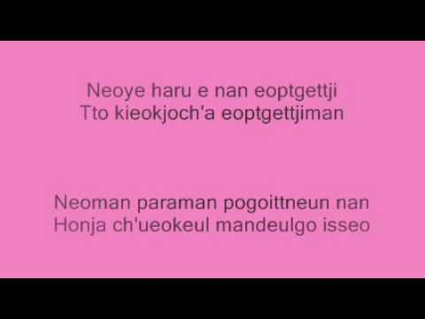 SS501 - Because Im Stupid Karaoke (L)