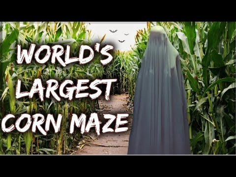 WORLD'S LARGEST CORN MAZE !!