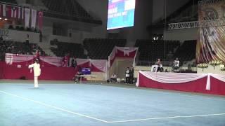 11th World Wushu Championships Taijijian 11届世界武术锦标赛太极剑 MAC