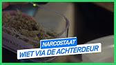 Wiet via de achterdeur   NARCOSTAAT   NPO 3 Extra