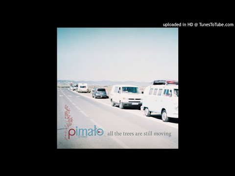 Pimalo - Your Smile