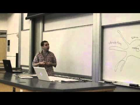 10. Introduction to Neuroscience I