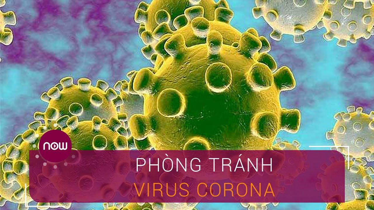 Phòng tránh thế nào để không nhiễm virus Corona? | VTC Now