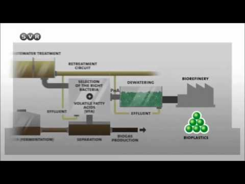 Bioprocess Engineering towards Sustainability