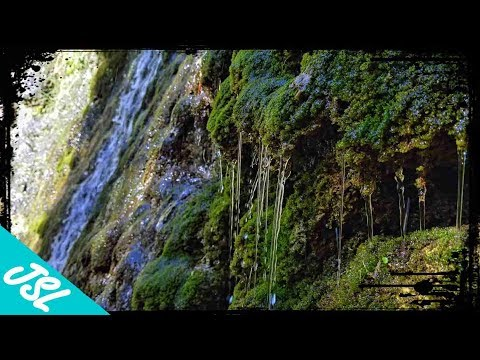 HIDDEN Waterfall In Cleveland National Forest - Falls Canyon Falls