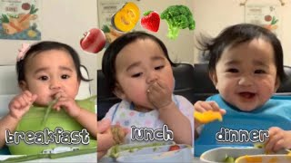 WHAT MY 8 MONTH OLD BABY EATS IN A DAY | JAPAN LIFE