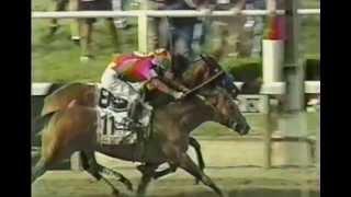 Kentucky Derby - Baffert's Excellent Derby Adventures