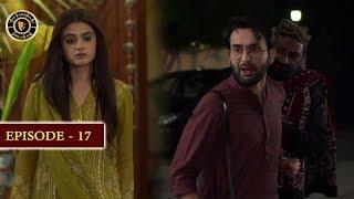 Do Bol Episode 17 | Top Pakistani Drama