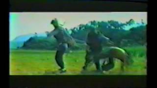 Video Little Mad Guy (1980) with Tiger Yang as Shung Woo download MP3, 3GP, MP4, WEBM, AVI, FLV November 2017
