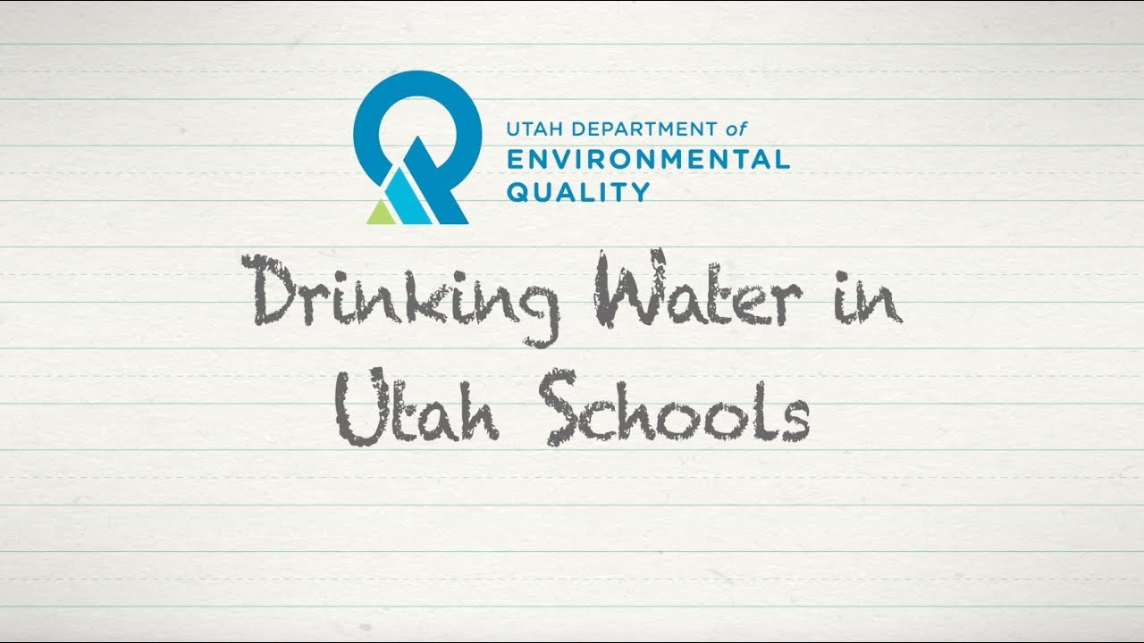 Division of Drinking Water 2017 State of the Environment