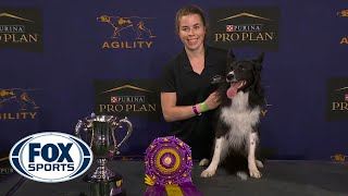 WATCH: Best of 2021 Masters Agility Championships from Westminster Kennel Club | FOX SPORTS