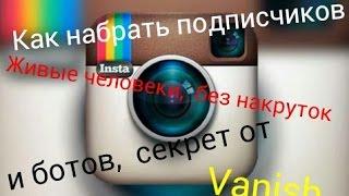 Создаем бота для Instagram на c#
