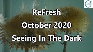 ReFresh October 2020 - Seeing In The Dark