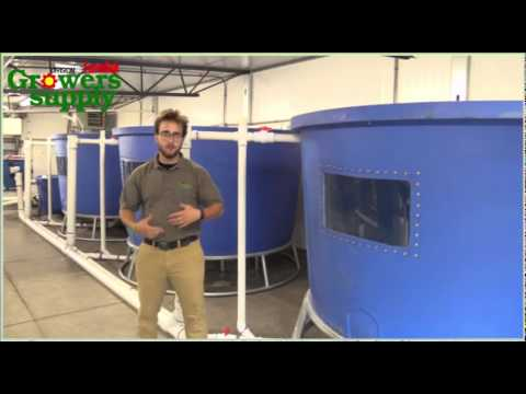 Stems to Scales HydroCycle Commercial Aquaponic System