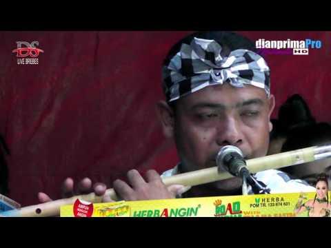 DIANA SASTRA LIVE   NGUDAG CINTA - DEDE RISTY    LOSARI - BREBES Mp3