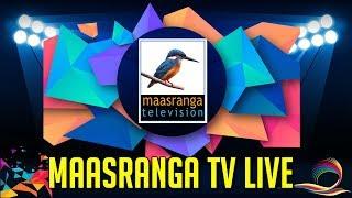 vuclip 🔴 Maasranga TV Live Bongobondhu BPL 2019 Live BPL T20 LIve বঙ্গবন্ধু বিপিএল BPL Live Cricket 🔴