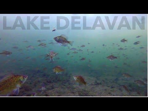 THOUSANDS Of Fish Below The Ice | Lake Delavan WI Ice Fishing Underwater Footage