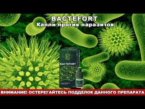 Капли Бактефорт (Bactefort) от паразитов