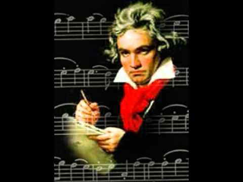 beethovens violin concerto Presentation and musical second movement third movement beethoven's violin concerto op 61 this particular beethoven violin concerto is.