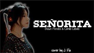 Cover images Shawn Mendes, Camila Cabello - Señorita (J. Fla cover)(Lyrics)