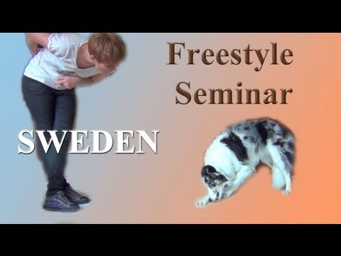 Beginning Canine Freestyle Sweden Seminar