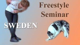 Beginning Canine Freestyle Sweden Seminar