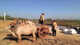 BAARMA (Myanmar) di Claudio Tura - testo di Lorenzo Pertoldi