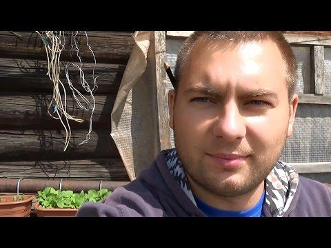 видео: Первые проблемы // Жизнь в деревне