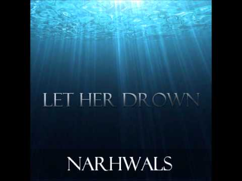 Let Her Drown  Narwhals