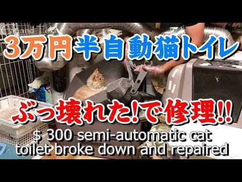 猫トイレぶっ壊れる。半自動猫トイレ修理DIY 可愛い子猫動画 How to make Semi automatic cat toilet breaks down  Cat toilet repair