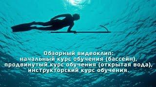 Обучение подводной охоте в школа подводной охоты 'Сталкер'(Школа подводной охоты 'Сталкер'. Обучение подводной охоте. Курс подводной охоты. http://yespromo.ru/dive-hunter/?ch=yt., 2014-07-23T20:38:23.000Z)