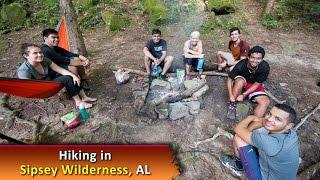 ПВД по лесу с туристическим клубом из Флориды. Клип