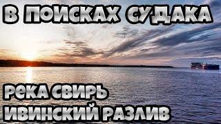 В поисках судака, река Свирь, Ивинский разлив, август 2019