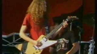VHQ(VS) Free Bird Knebworth 1976 -  Lynyrd Skynyrd