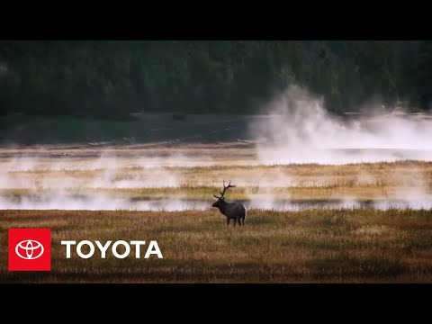 Battery Life After Cars (Visual Aide) | The Toyota Effect | Toyota