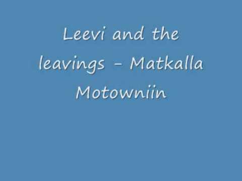 leevi-and-the-leavings-matkalla-motowniin-pohjoiskarjala2008