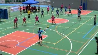 2014新界西區中學閃避球錦標賽 中學男子組 下半場 東華三